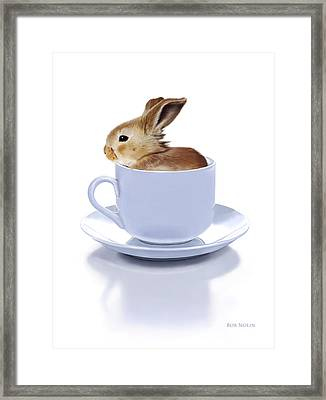 Morning Bunny Framed Print by Bob Nolin