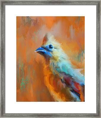 Morning Cheer Framed Print by Jai Johnson
