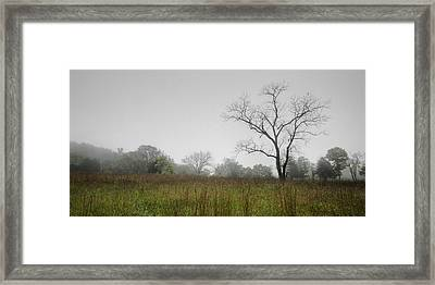Morning Fog Framed Print by Ryan Heffron