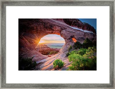 Morning Glory Framed Print by Edgars Erglis