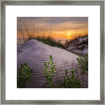 Morning Glow Framed Print by Steve DuPree