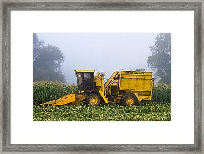 Morning In Muranyis Framed Print by Tim Fitzwater