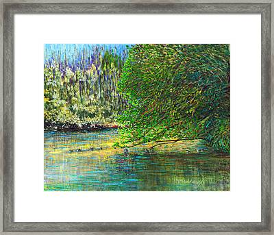 Morning In The Glen Framed Print by Thomas Michael Meddaugh