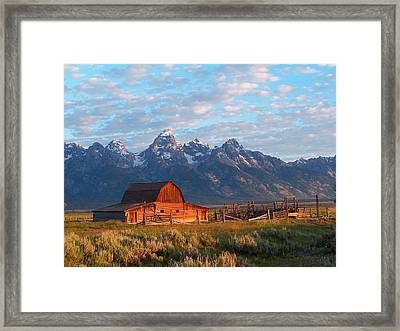 Morning Light Framed Print by Vijay Sharon Govender