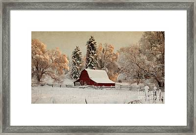 Morning Magic II Framed Print by Beve Brown-Clark Photography