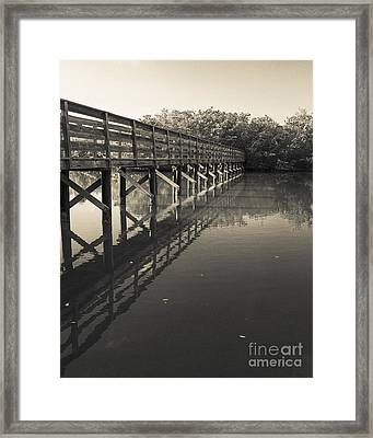 Morning On The Bayou Framed Print by Edward Fielding