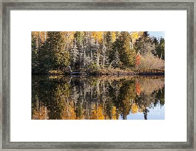 Morning Reflections Framed Print by Donna Crider