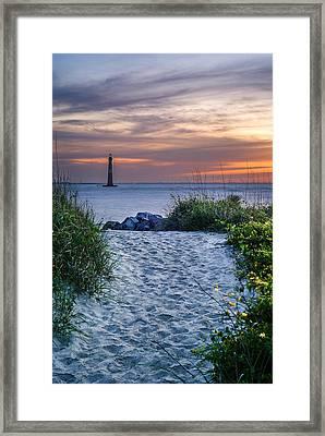 Morning Stroll Framed Print by Steve DuPree