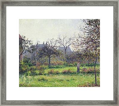Morning Sun Framed Print by Camille Pissarro