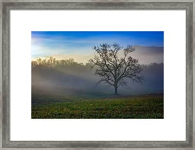 Morning Sunbeams In Cades Cove Framed Print by Rick Berk