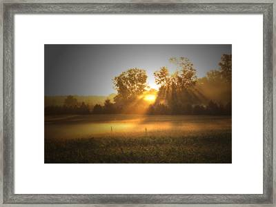 Morning Sunrise On The Cornfield Framed Print by Cathy  Beharriell