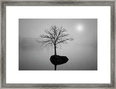 Morning Tranquility Framed Print by Dave Gordon