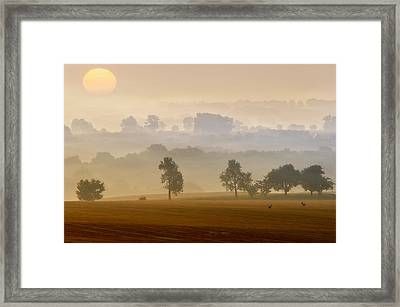 Morning View Framed Print by Piotr Krol (bax)