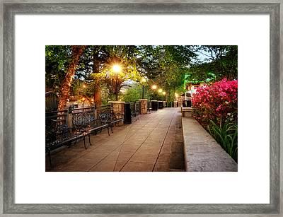 Morning Walk In Gatlinburg Tennessee Framed Print by Greg Mimbs