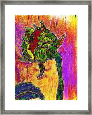 Mornings Glow Framed Print by Wayne Potrafka