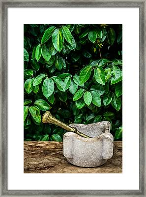Mortar And Pestle Framed Print by Marco Oliveira