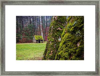 Moss Covered Sheep Hut - Cuttalossa Farm Framed Print by Bill Cannon