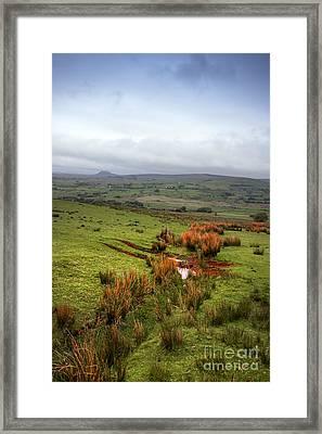 Mossy Hills Framed Print by Svetlana Sewell