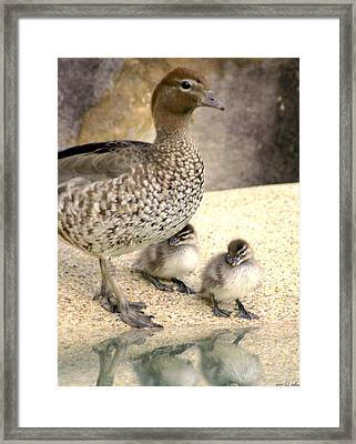 Mother Of Twins Framed Print by Holly Kempe