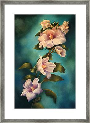 Mothers Rose Of Sharon Framed Print by Marti Bailey