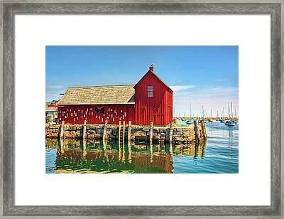Motif One Framed Print by Marcia Colelli