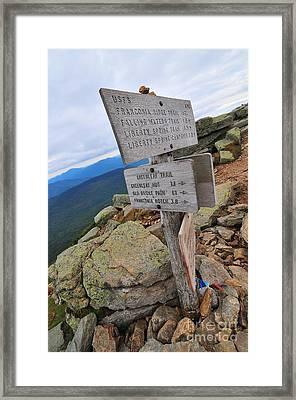 Mount Lafayette Summit Framed Print by Catherine Reusch  Daley