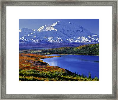 Mount Mckinley And Wonder Lake Campground In The Fall Framed Print by Tim Rayburn