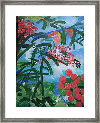 Mountain Ash Framed Print by Krista Ouellette