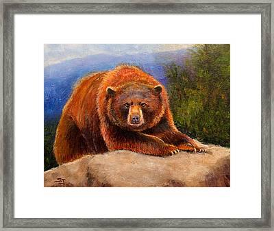 Mountain Bear Framed Print by Susan Jenkins
