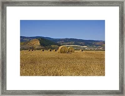 Mountain Farm Framed Print by Mark Smith