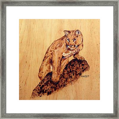 Mountain Lion Pillow/bag Framed Print by Ron Haist