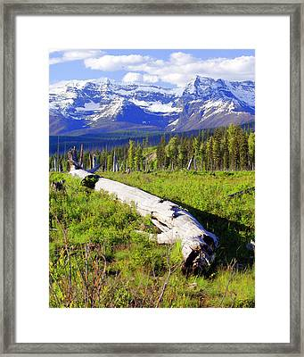 Mountain Splendor Framed Print by Marty Koch