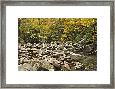 Mountain Stream  6058 Framed Print by Michael Peychich