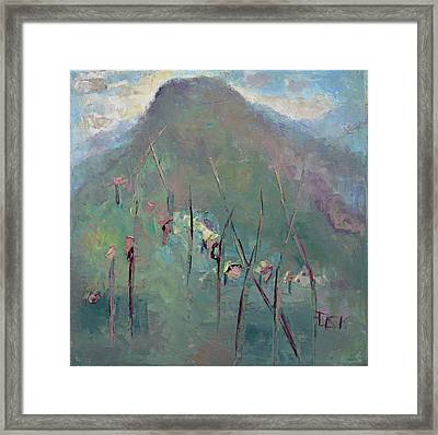 Mountain Visit Framed Print by Becky Kim