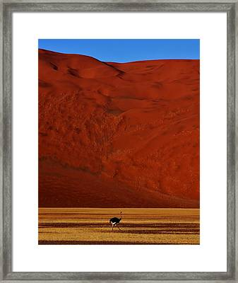 Mountainous Dune Framed Print by Stacie Gary