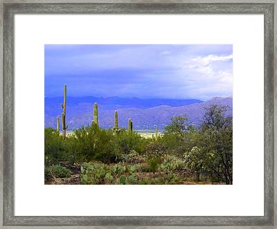 Mountains And Saguaros Framed Print by Teresa Stallings