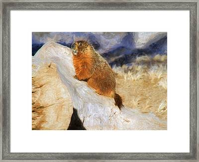 Mountains To Climb Framed Print by Donna Kennedy