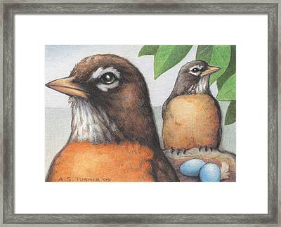 Mr And Mrs Robin Are Expecting Framed Print by Amy S Turner