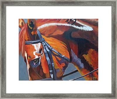 Mr. Big Stuff Framed Print by Anne West