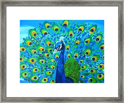 Mr Peacock Framed Print by Cathy Jacobs