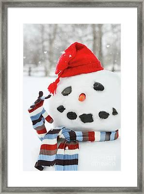 Mr. Snowman Framed Print by Sandra Cunningham