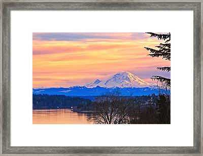 Mt Rainier From Lake Washington Framed Print by Alvin Kroon