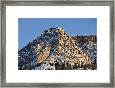 Mt. Royal Framed Print by Tobin Truslow