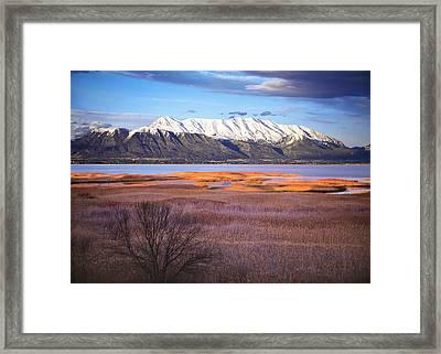 Mt. Timpanogos And Utah Lake Framed Print by Utah Images