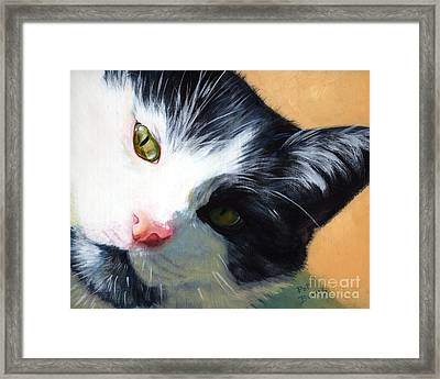Muff Framed Print by Pat Burns