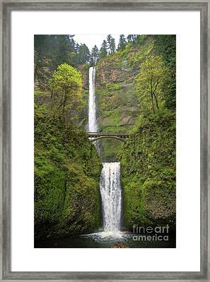 Multnomah Falls Framed Print by Jon Burch Photography