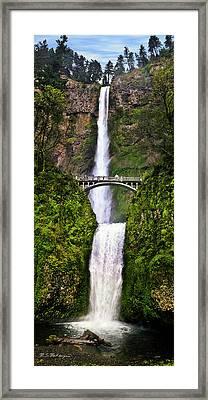 Multnomah Falls Framed Print by M S McKenzie