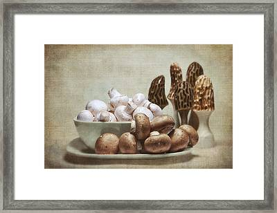 Mushrooms And Carvings Framed Print by Tom Mc Nemar