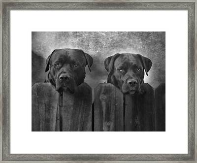 Mutt And Jeff Framed Print by Larry Marshall