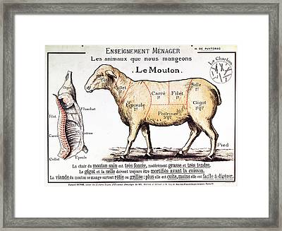 Mutton Framed Print by French School